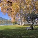 Lake at Banyoles
