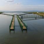 Ebro-Delta