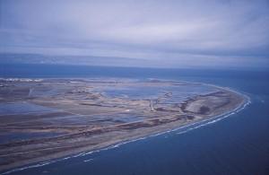 Delta of the Ebro