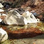 Fluss mit kristallklarem Wasser im Montseny