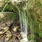 """Spring """"Font Tornadissa"""""""