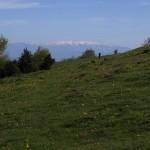 In der Ferne, die verschneiten Pyrenäen