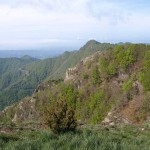 Gebirgszug des Puigsacalm