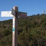 Wanderwege auf dem Gebirgszug Collserola