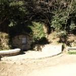 Naturquelle auf dem Berg Collserola