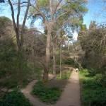 Gartenanlage auf dem Montjuic