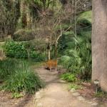 Public garden in Montjuic
