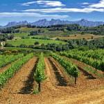 Montserrat visto desde el Penedés
