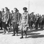 La Brigada alemana Thälmann