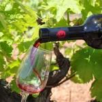 Wein aus dem Penedés